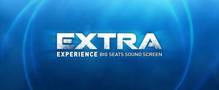 The Extra Experience  image
